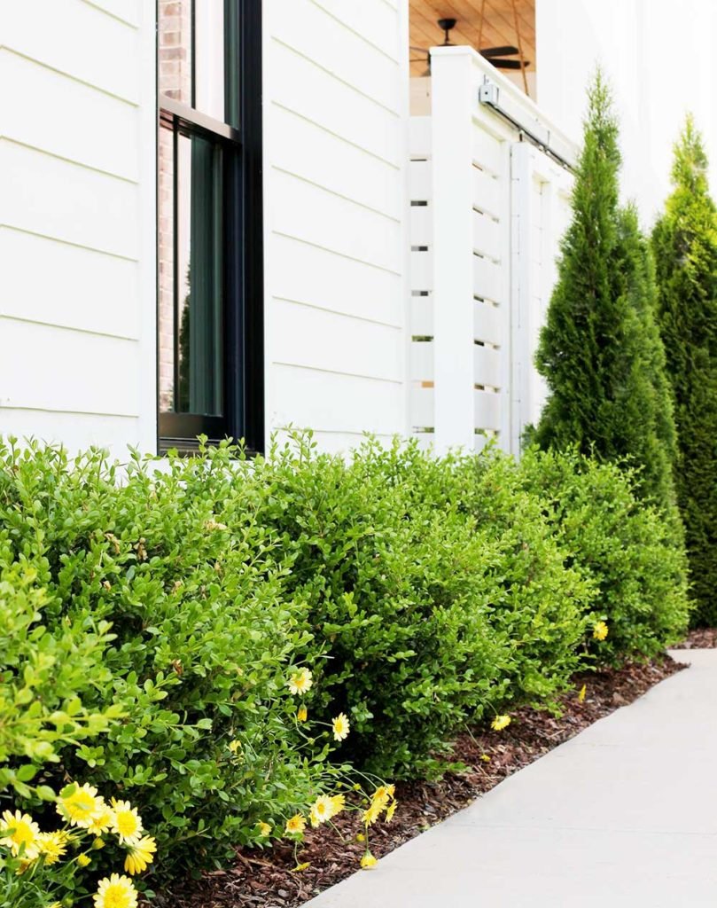 . Five Simple Landscaping Tips   Plank and Pillow